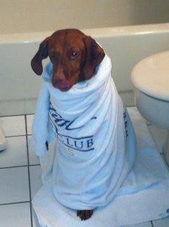 Lulu at bathtime